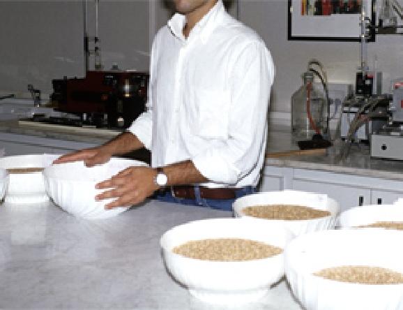 集められた小麦を検査し、最適な配合を決めます。